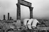 Josef Koudelka, Il tempio di Ercole ad Amman, Giordania, 2012 © Josef Koudelka, Magnum Photos,