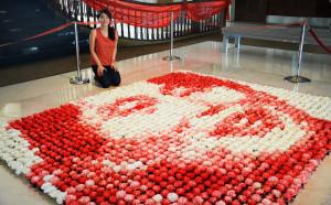 Red Hong Yi, ritratto di Aung San Suu Kyi, 2000 garofali