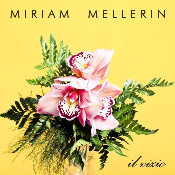 Miriam Mellerin - Il Vizio
