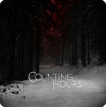counting hours cover album the will