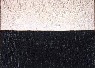 Alberto Burri_Terre_Olgiati, Bianco Nero Cretto, 1972, acrovinilico su cellotex, 76,5 x 101,5 cm