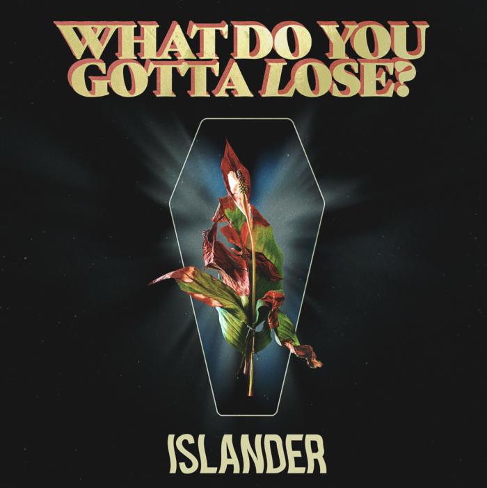 islander cover what do you gotta lose